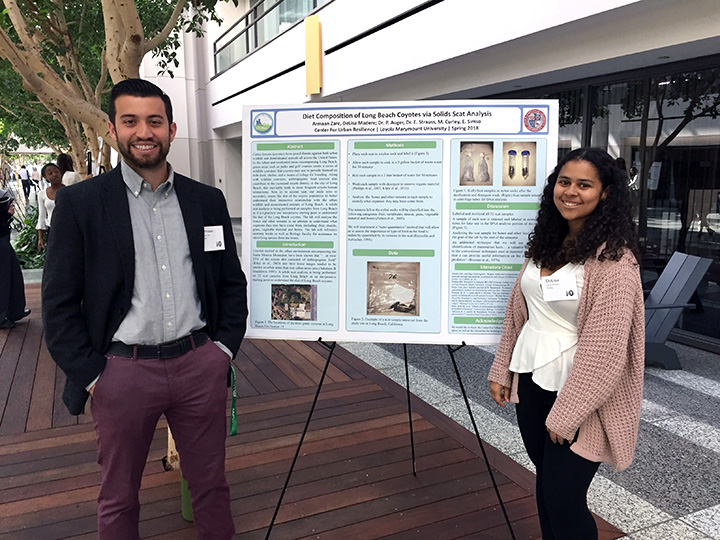 Armaan Zare, LMU class of 2018, and DeLisa Madere, LMU class of 2020, present their work on coyote scat solids analysis in University Hall as part of the City of Long Beach coyote assessment project