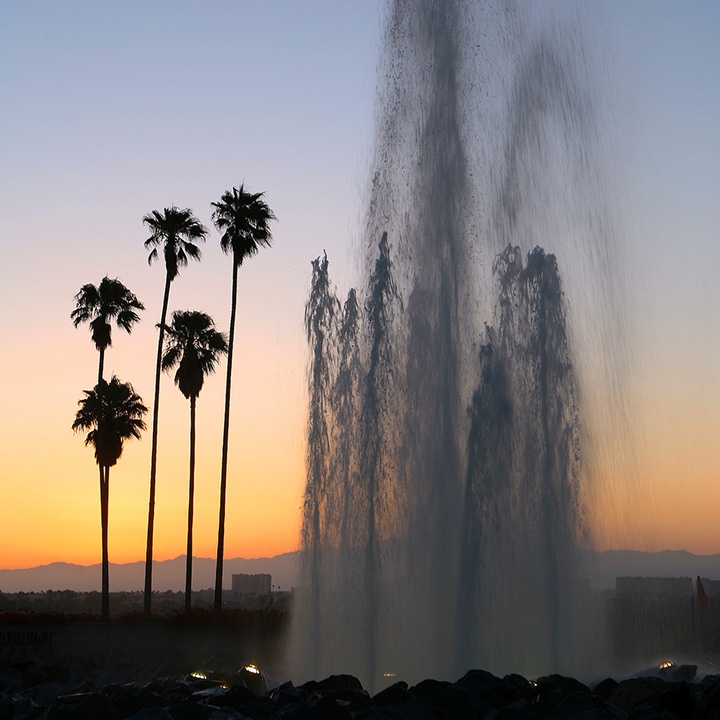 The LMU entrance fountain and palm trees at sunset